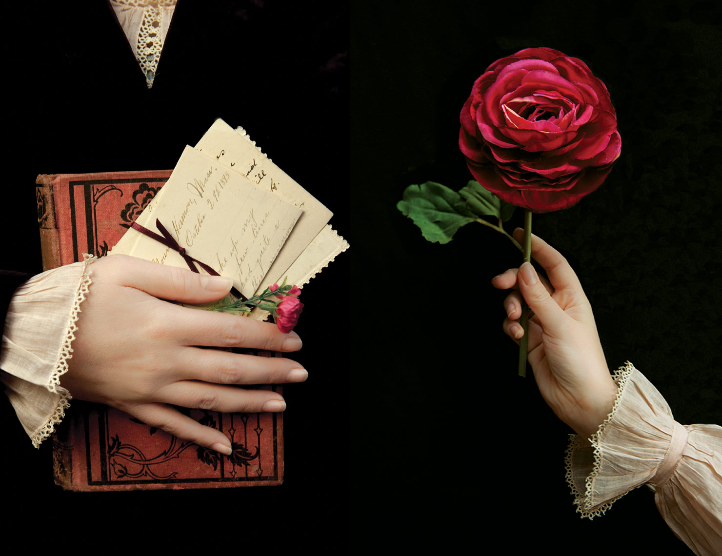 Amyhands-book-flower