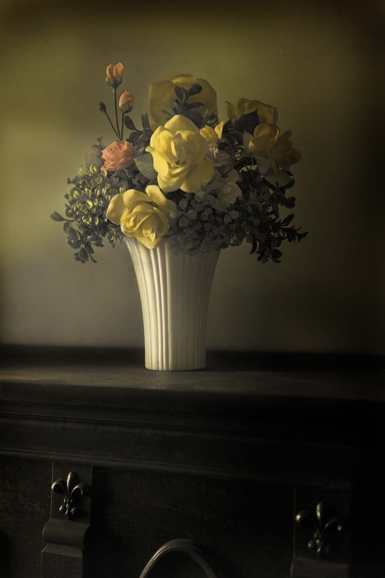Rose-vase-toned.jpg
